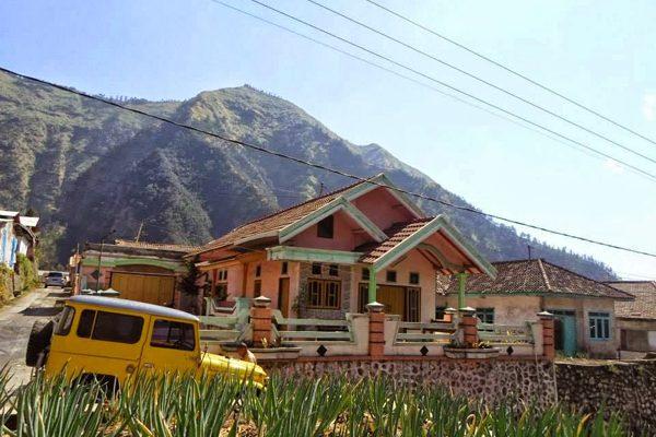 Homestay Di Bromo - Homestay Di Gunung Bromo