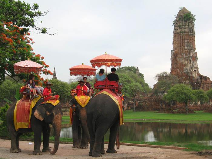 Penggunaan gajah untuk pariwisata mendapatkan kecaman