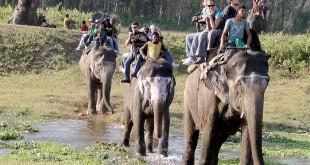 atraksi wisata menunggang gajah